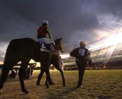競馬する馬の引退や全盛期はいつ?