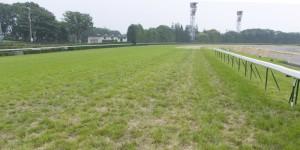 競馬の馬場状態の変化はどれほどレースに影響が出る?