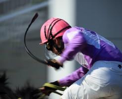 競馬でムチで叩かれてる馬は速くなる?痛くはない?