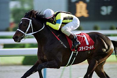 ステイゴールド 産駒 代表馬